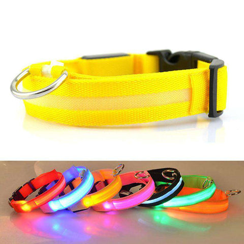 LED Glowing Dog Collar - Green Earth Animals