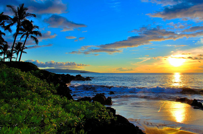 13+ Adventures in Maui | Complete Guide