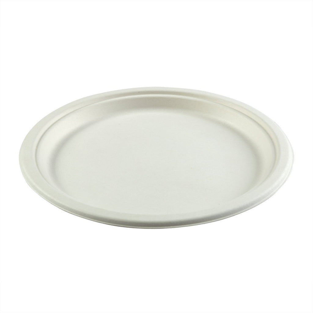 10in Round Plate