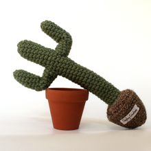 BILLY - Crochet Saguaro Cactus