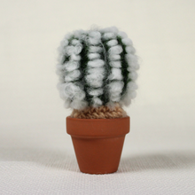"Mini Cactus (3"" Tall)"