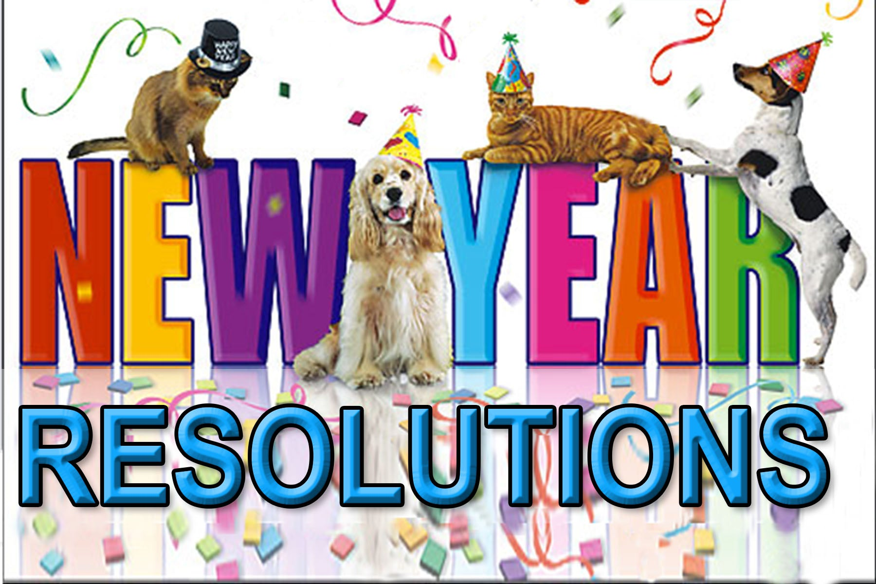 new year resolutions pets