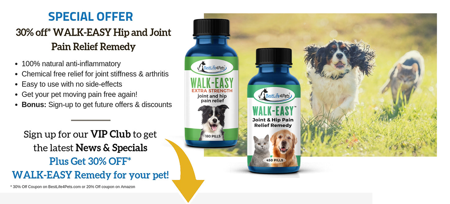 dog joint pain relief medicine
