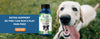 Dog Cat pet supplements