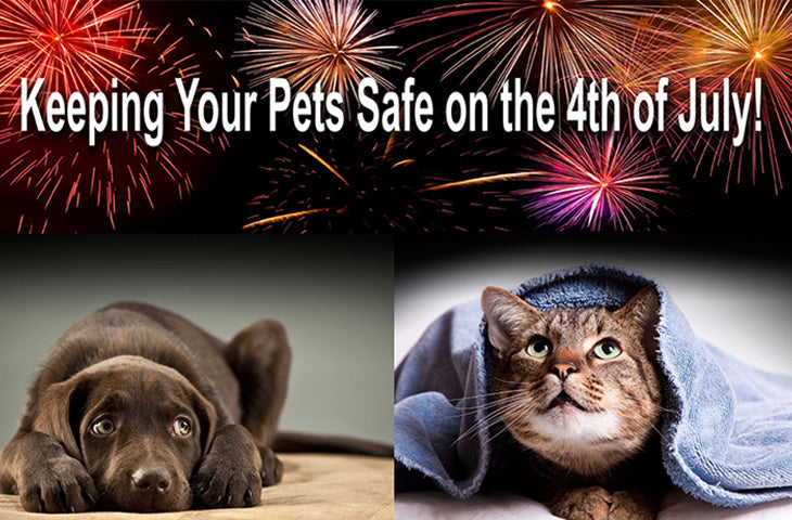 How to keep your pets safe during holidays