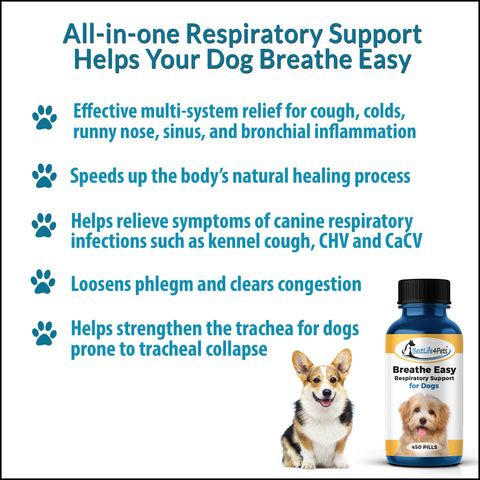 Breathe Easy Respiratory Support for Dogs - Soothes Kennel Cough, Runny Nose and Dog Flu (450 Pills)