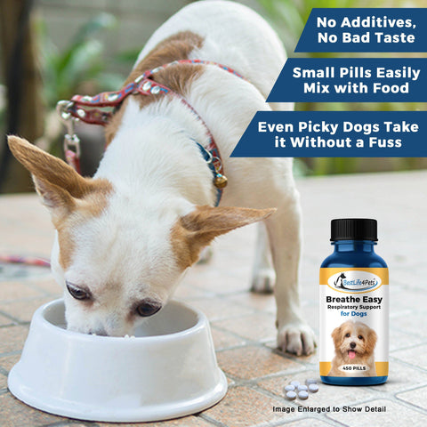 Image of Breathe Easy Respiratory Support for Dogs - Soothes Kennel Cough, Runny Nose and Dog Flu (450 Pills)