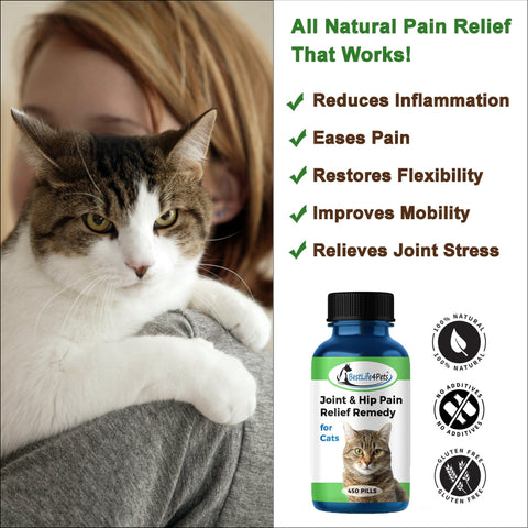 Image of Cat Hip and Joint Pain Relief - Effective Anti-inflammatory and Arthritis Pain Medicine (450 pills)