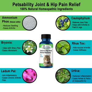 Cat Hip and Joint Pain Relief - Effective Anti-inflammatory and Arthritis Pain Medicine (450 pills)