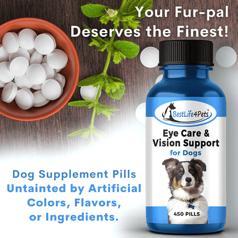 Eye Care & Vision Support for Dogs - Conjunctivitis and Eye-Infection Relief Remedy