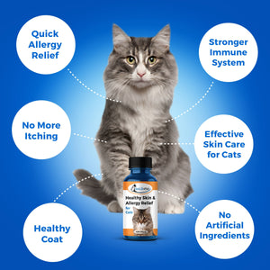 Skin Treatment for Cats