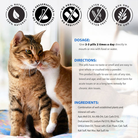 Image of Healthy Skin, Coat and Allergy Relief Dermatitis Remedy for Cats (450 pills)