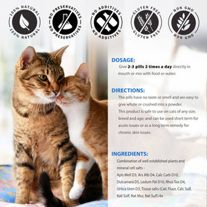Healthy Skin, Coat and Allergy Relief Dermatitis Remedy for Cats (450 pills)