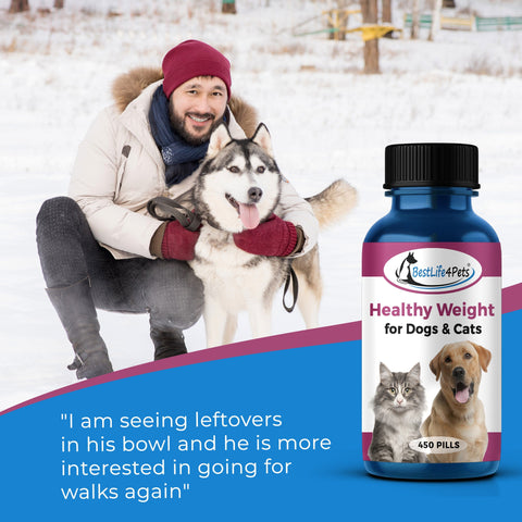 Image of Healthy Weight Vitamins for Dogs