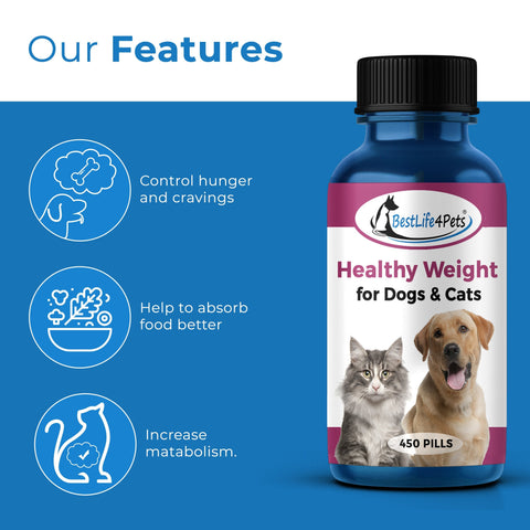 Healthy Weight for Dogs and Cats