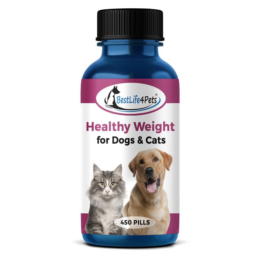 Healthy Weight for Dogs and Cats - Safe, Proven Weight Loss for Overweight Pets (450 pills) - BestLife4Pets