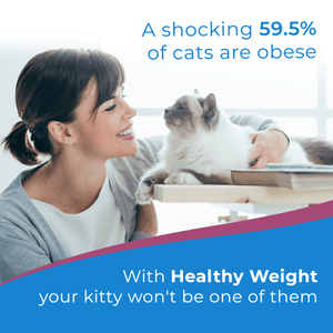 Weight Loss for Overweight Pets