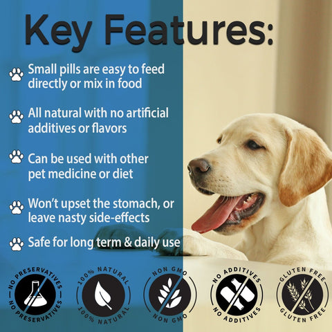 Image of Hypo-Balance Thyroid Support for Dogs - (450 pills)