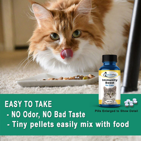 Image of Immunity Boost for Cats - Helps Prevent Colds and Infections - (450 pills)