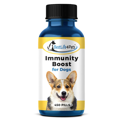 Image of Immunity Boost for Dogs - Helps Protect Against Kennel Cough, Dog Flu and Infection - 450 Pills