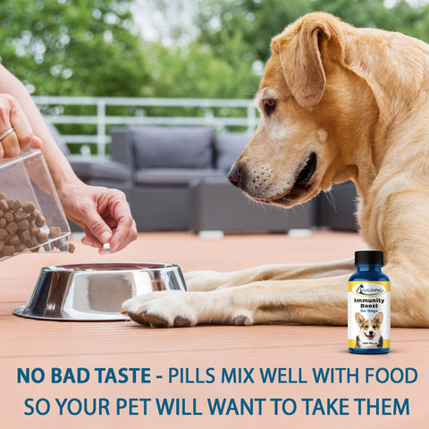 Immunity Boost for Dogs - 450 Pills