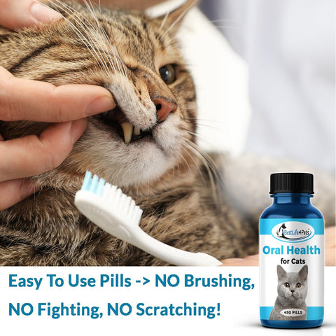 Image of Natural Oral Solution for Cats