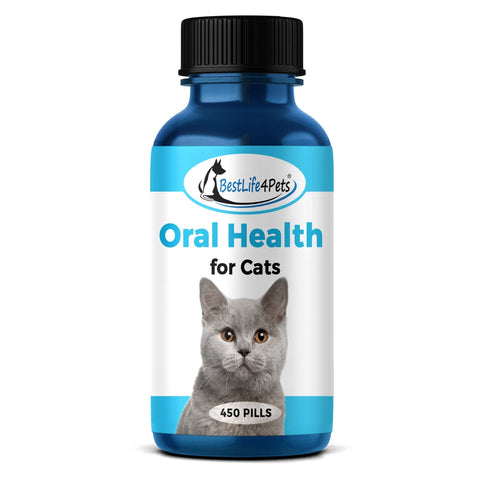 Image of Oral Health for Cats Dental Treatment - Natural Stomatitis and Gingivitis Solution (450 pills) - BestLife4Pets