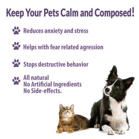 Image of Anxiety Relief for Pets