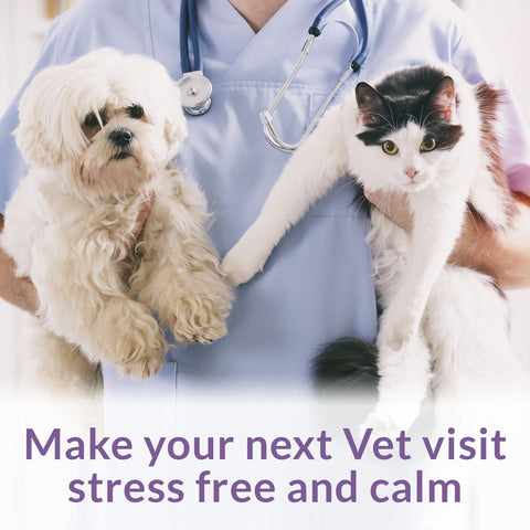 Image of Anxiety and Stress Relief Spray for Pets