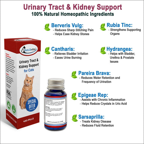 Image of UTI Remedy for Cats