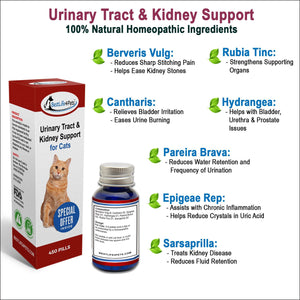 UTI Remedy for Cats