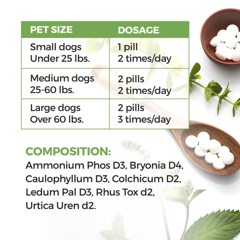 Image of Natural Pain Relief for Dogs