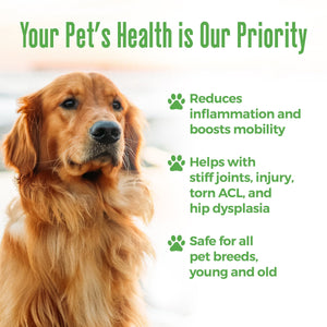 Arthritis and Joint Pain Relief Remedy for Dogs