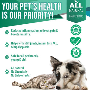 Arthritis and Joint Pain Relief Remedy for Dogs and Cats