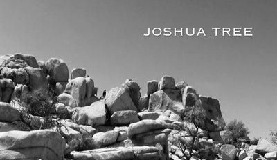 Road Trip Joshua Tree