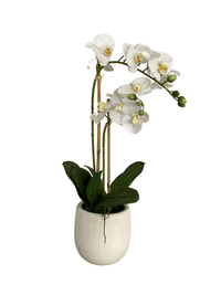 cozy-furniture-home-decor-artificial-plant-orchid-large
