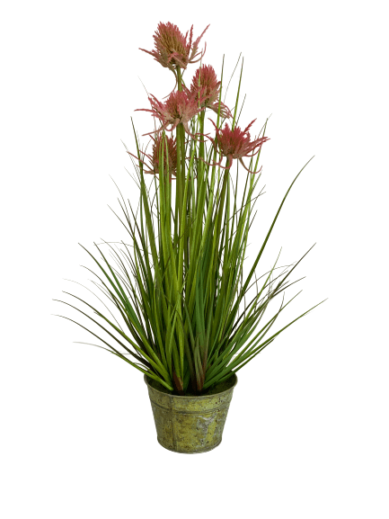 cozy-furniture-home-decor-giftware-artificial-plant-thistle-grass