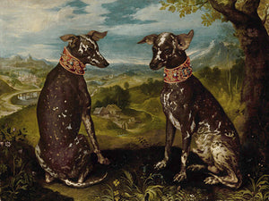 A Pair of Mexican Hairless Dogs - Venus Art Prints