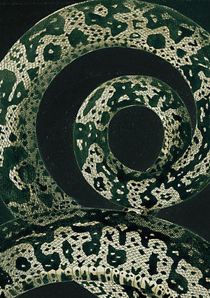 Green Snake - Venus Art Prints