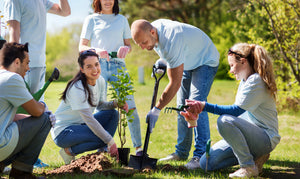Plant Trees Every Month Club (We Do The Planting)