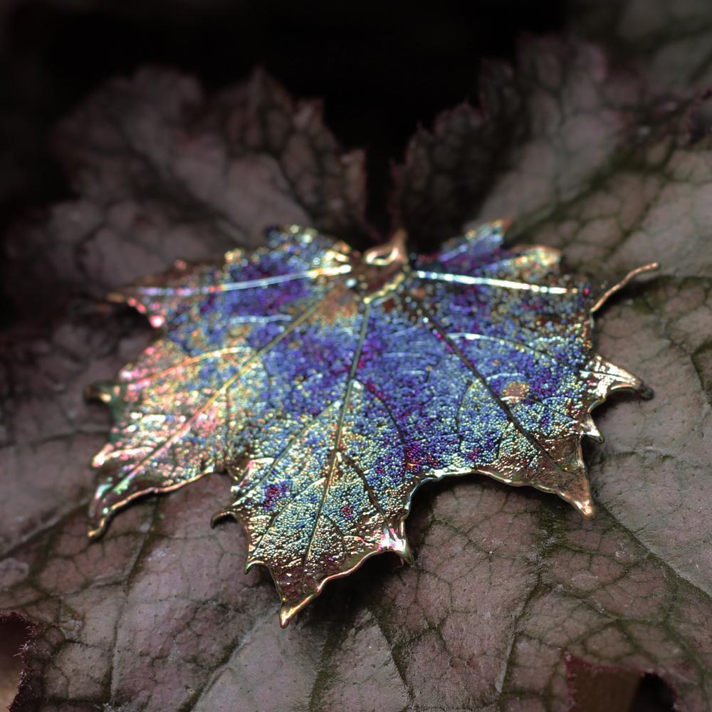 Canadian Maple Dark Rainbow Leaf