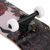 Ahorn Long Board Complete Skateboard