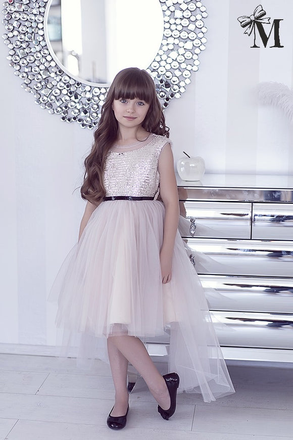 Occasion wear Dress, Tulle