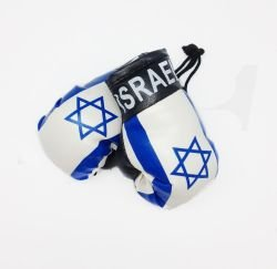 Mini Boxing Gloves - Israel