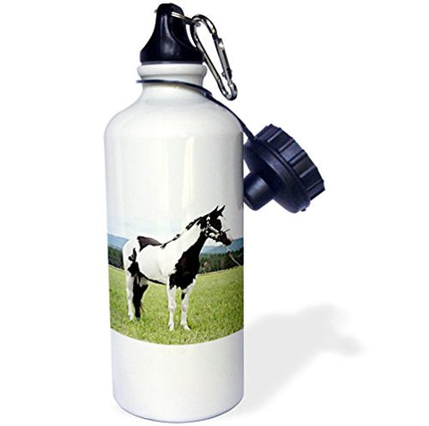 3Drose Wb_672_1 Paint Horse Sports Water Bottle, 21 Oz, White