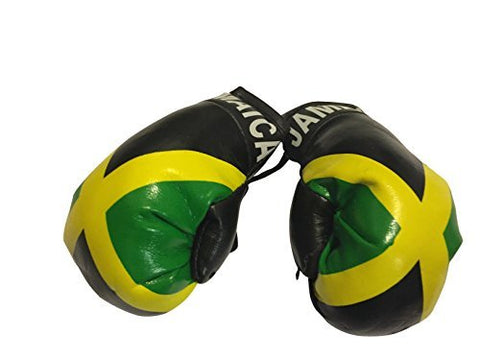 Flag Mini Small Boxing Gloves To Hang Over Car Automobile Mirror  Americas (Country: Ecuador)
