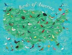 True South  Birds of America  Discover the States Series Jigsaw 500 Pieces 24x18