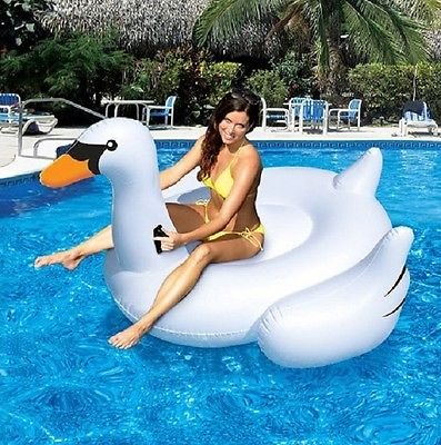 Pool Toys Swan Toys for Swimming Pools Kids & Adults