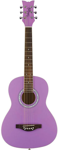 Other 6 String Acoustic Guitar, Right, Popsicle Purple (Other)