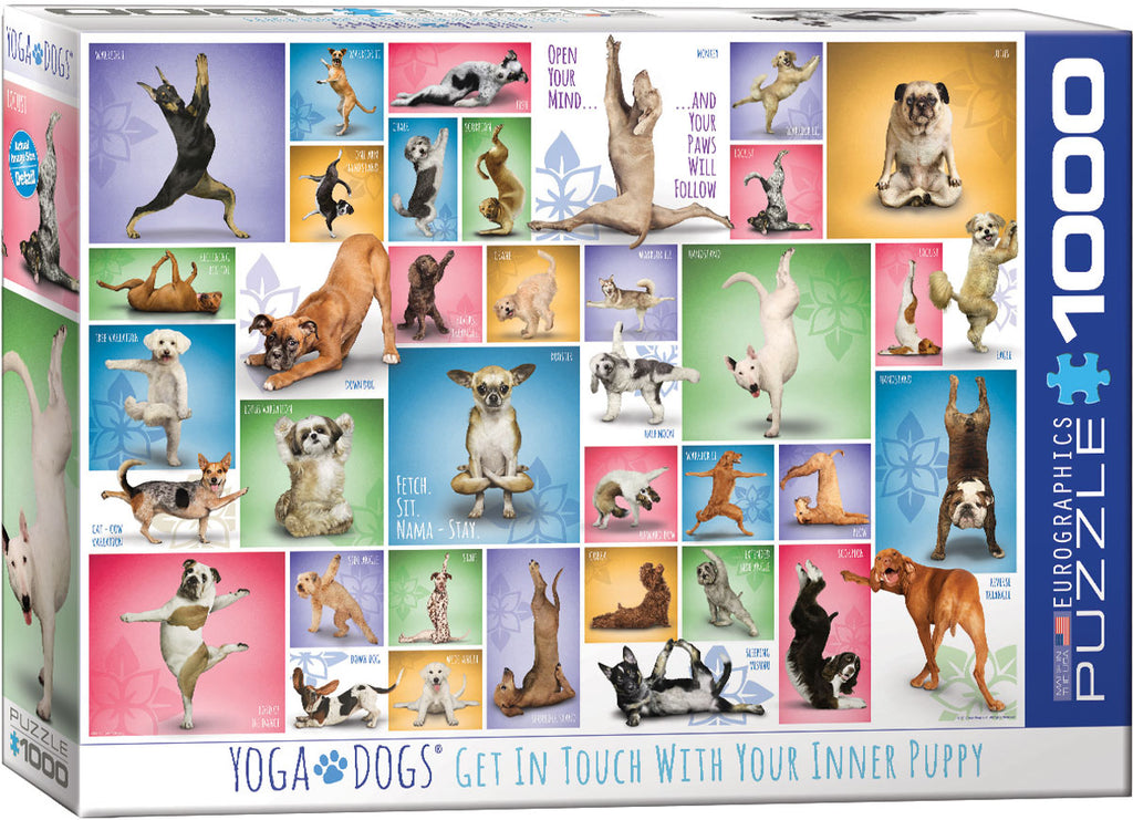 Eurographics Yoga Dogs 1000 Piece Jigsaw Puzzle